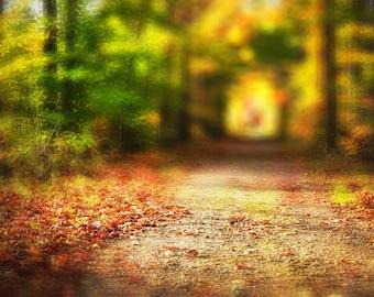 Fall digital backdrop