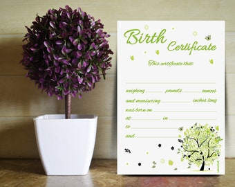 Birth certificate designed for the baby