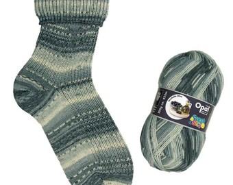 Opal Sock Yarn Fresh & Juicy, 100g/465yd, 9366