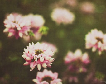 dreamy, green, pink, nature, flowers, fine art photography