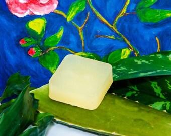 Succulent Moisture - Aloe Vera Soap