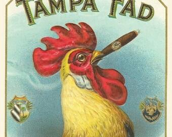 """Vintage Cigar Label, Tampa Fad, Smoking , Tobacco, 11x14"""" Cotton Canvas Print"""