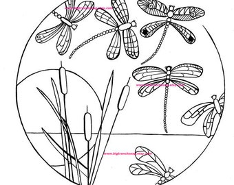 Adult Coloring Page - Dragonflies - Hand Drawn Image - Digital Download
