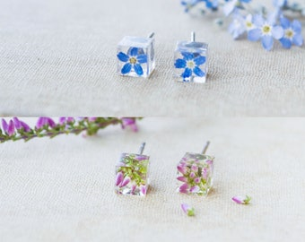 Real flower earrings Forget me not Flower studs Terrarium jewelry Resin flower jewelry Geometric earrings Botanical earrings Heather