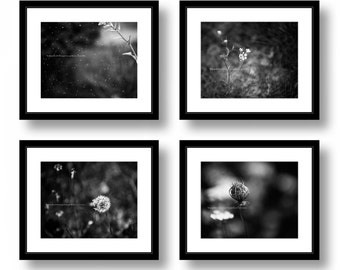 Set of four Black and White Nature Photographs, Flowers, Dandelion, Spider Web, Photography, Office Decor, Home Decor