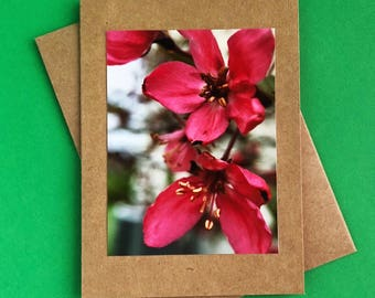Handmade - greeting cards - note cards - blank cards