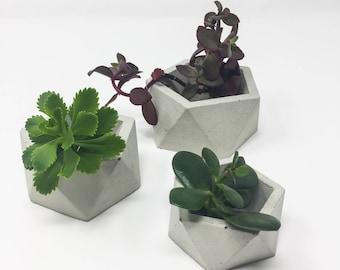 Geometric Concrete Planter, Icosahedron, Concrete Succulent Planter, Modern Concrete Planter, Cement Planter, Mini Planter,Concrete Tealight