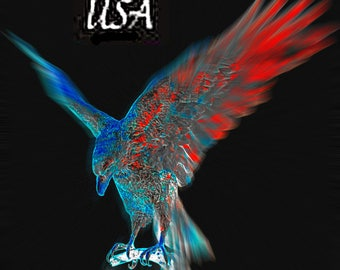 USA Eagle T-shirt