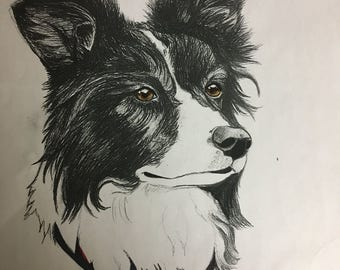 Charcoal/Pencil/Pencil Crayon/Pastel/Ink/Watercoulor/Acrylic. Commission Drawing or Painting. (Pets or Other Animals) Customizable Artwork