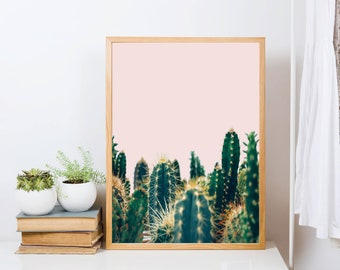 cactus print, cactus wall art, botanical print, tropical decor, nature photography, succulent poster, kitchen wall decor, bathroom art,cacti