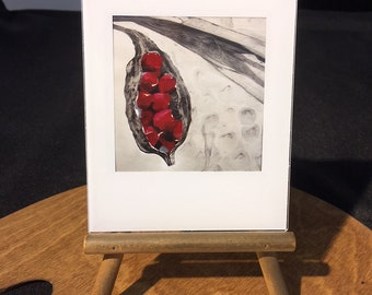 Red Berry - mini