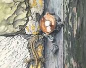 Lizard on Lightswitch // ...