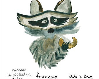 Francois the Raccoon: Animal Identification Guide Art Print