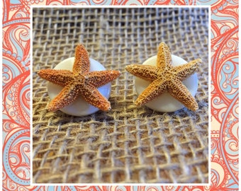 Starfish Pearl Stud Earrings - Flat Pearl Star Fish Studs - Beach Earrings - Orange Starfish Stud Earrings - Starfish Pearl