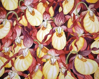 Yellow Lady Slippers an origial watercolor painting