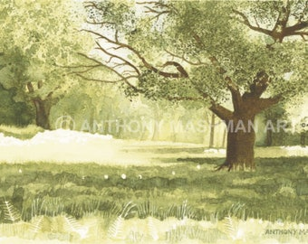 Summer Meadow. Limited edition giclée print, professionally printed in the UK using inks and paper of archival quality.