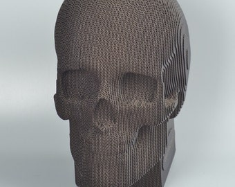 Human Skull Model - DIY Cardboard Craft
