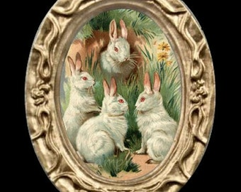 White Easter Bunnies Miniature Dollhouse Rabbit Art Picture 6836