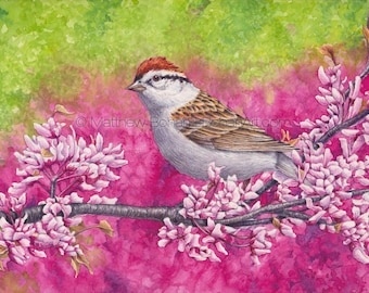 PRINT of a Chipping Sparrow on Redbud, Watercolor Print, Art Print, Wall Art, Home Decor, Wildlife Illustration, Nature