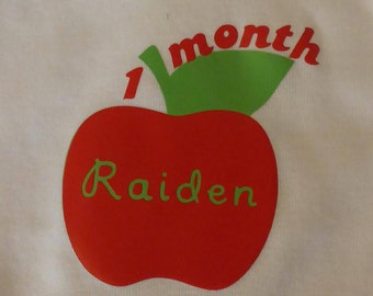 Personalized Monthly Milestone Bibs