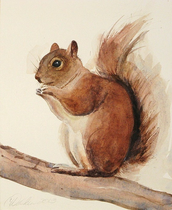 Red Squirrel Print Nature Art Watercolors Archival Print