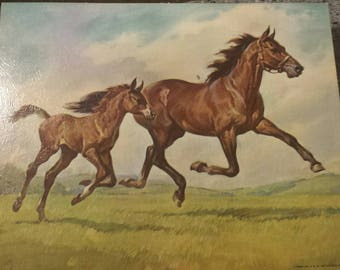 """Horses by Elmore Brown - Winde Fine Prints 8""""x10"""""""
