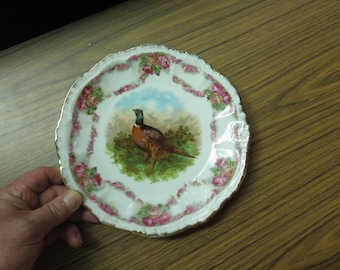 Antique Germany ? Ornate Pheasant Plate