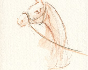 """Horse Art, Painting, Original Watercolor by Anna Noelle Rockwell, """"Handsome"""""""