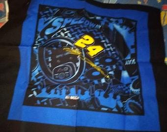 Jeff Gordon pillow Panel