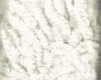 "Lady Dot 100% Cotton 1/4"" Chenille Trim - Snow - 3 Yards"