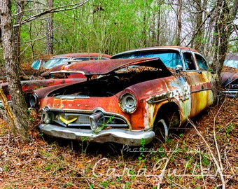 1956 Desoto in the Woods Photograph