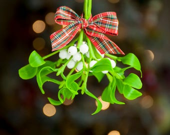 Christmas mistletoe hanging decorations Christmas ornaments Mistletoe kissing ball Christmas greenery Christmas home decor Christmas bell