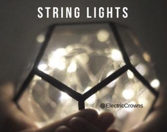 LED lights, Led Light, Led Centerpiece Light, Mini Lights, Battery Operated Lights  *terrarium not included