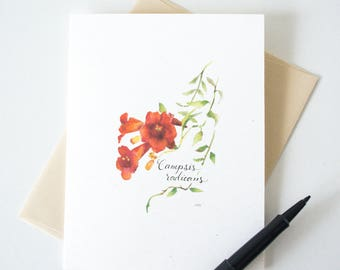 Trumpet Vine Blossom Blank Notecard - Wildflower Stationery - Botanical Watercolor Print A2 Card
