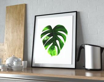monstera art print , palm leaf wall decor, tropical wall poster, tropical leaf prints, printable leaf palm,printable palm leaf