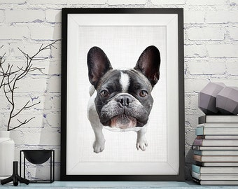French Bulldog Print, Dog Print, Animal Print, Nursery Print, Puppy Print, Dog Art, Wall Art, Poster, Prints, Dog Photography, Puppy Art,129