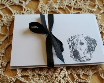 Set Of 10 Labrador Retriever Note Cards