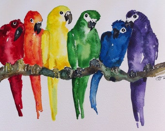 Rainbow Pride Parrots