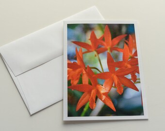 Floral Photography Note Card; Note Card Blank Inside; Note Card with Envelope