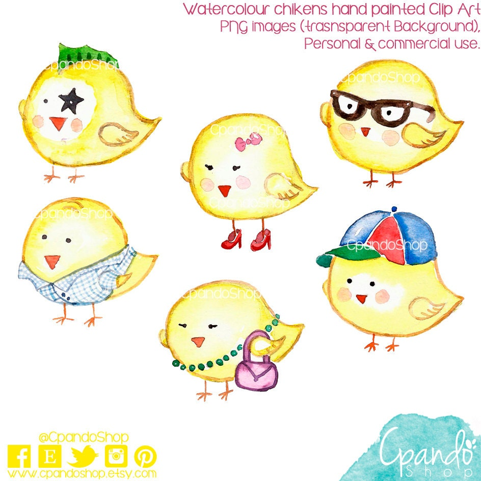 Chicken watercolor hand painted clip art (6 png images with ...