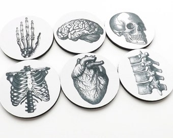 Hostess Gift Coaster anatomy graduation teacher brain anatomical human heart doctor nurse medical student skull party favor housewarming