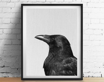CROW Raven Bird Printable Art, Halloween Wall Art Print, Black and White Poster, Black Bird Fall Autumn Decor Instant Download