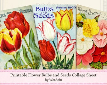 Printable Flower Bulb Seeds Plant Catalog Covers Tulips Begonias Sweet Peas Color Prints Collage Sheet Digital Download Journal Cards