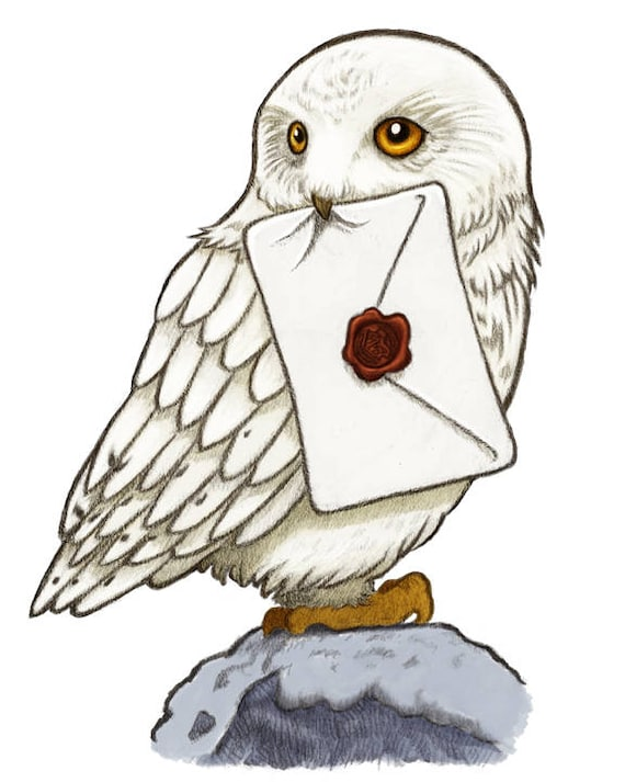 Hedwig Art Print Harry Potter Art Harry Potter Print Harry