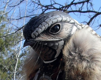 Whippoorwill Totem