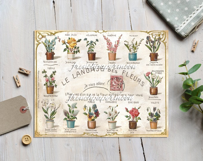 Digital Antique French Graphic, The Language of Flowers, Language de Fleurs, Printable, Vintage Flowers