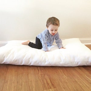 XL Dog Bed Pillow, Large Dog Bed Pillow, Custom Dog Bed Pillow, Dog Bed Pillow, Dog Bed Insert, Hypoallergenic Dog Bed Pillow, Floor Pillow