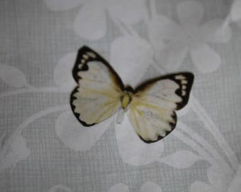 transparent Butterfly beige and Black 2.9 x 2 cm, n133