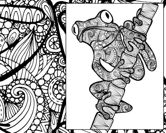 frog coloring sheet animal coloring pdf zentangle adult. Black Bedroom Furniture Sets. Home Design Ideas