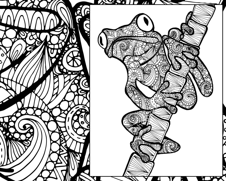frog coloring sheet animal coloring pdf zentangle adult